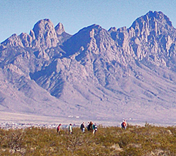 Desert Discovery Trail Guided Walk